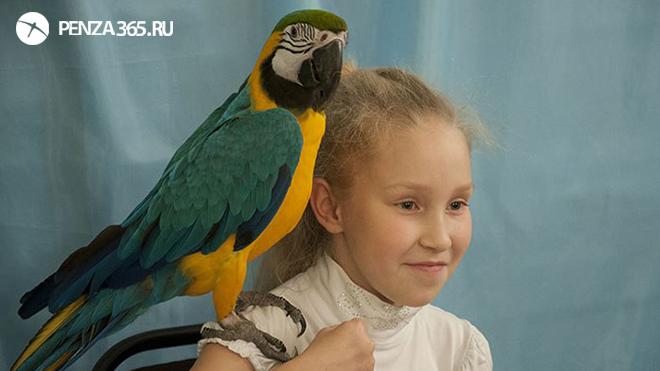 Выставка попугаев Пенза