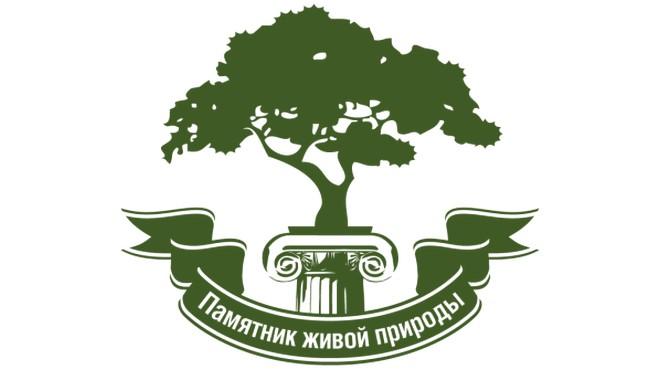 Деревья памятники живой природы