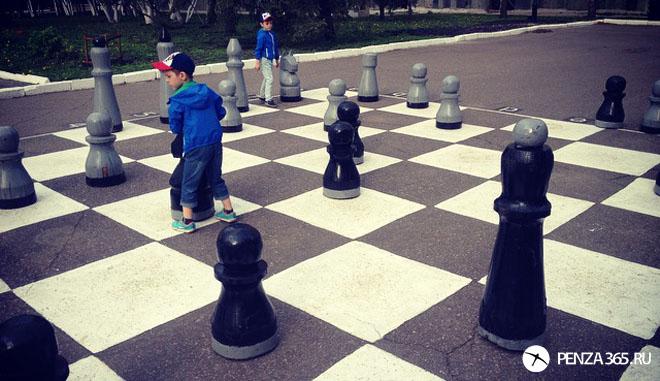 шахматы пенза арт обьект