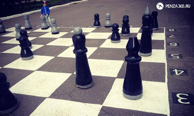 пенза арт обьект шахматы в пензе