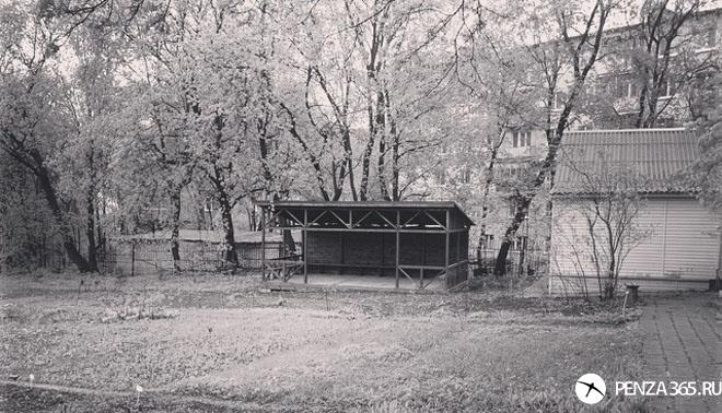 фотография ботанического сада в пензе