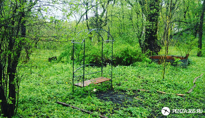 Ботанический сад сад в пензе фото