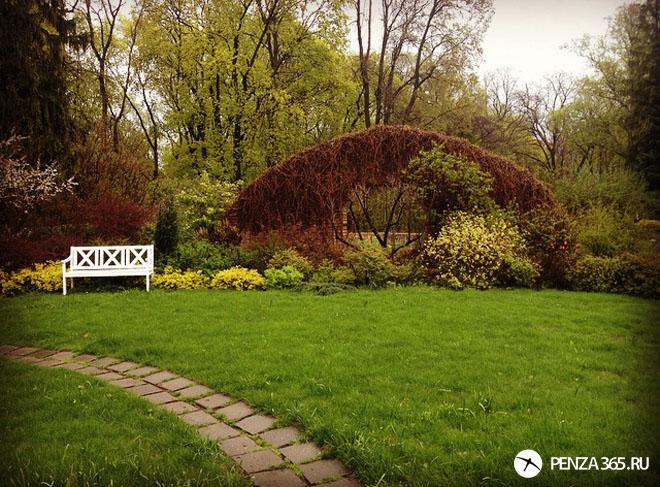 ботанический сад в центре города пенза
