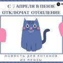 Penza365.ru